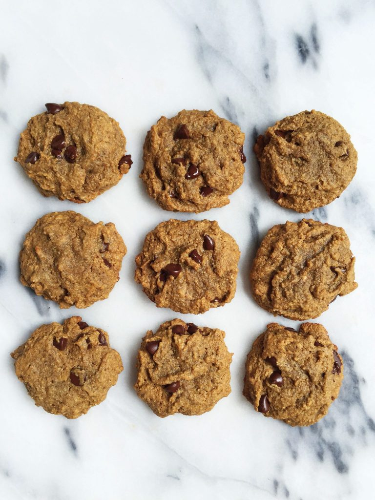 Grain, Gluten & Dairy-free Soft Paleo Chocolate Chip Cookies