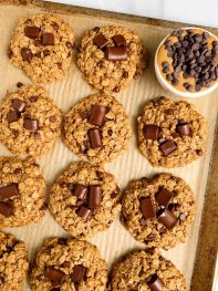 Oatmeal Chocolate Chip Lactation Cookies (gluten-free)